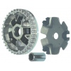 DBT-106 WH-100 motorcycle clutch